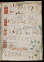 manuscrito173